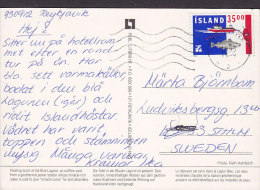 Iceland PPC The Blue Lagoon REYKJAVIK 1993 To STOCKHOLM Sweden 35 Kr Fishing Stamp (2 Scans) - 1944-... Republique
