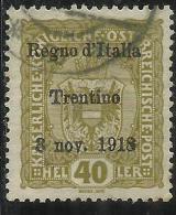 TRENTINO ALTO ADIGE 1918 SOPRASTAMPATO AUSTRIA HELLER  40 H USATO USED OBLITERE´ - 8. Occupazione 1a Guerra
