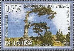 CG 2015-364 SAVE EUROP NATUR, CRNA GORA MONTENEGRO, 1 X 1v, MNH - Montenegro