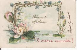 Souvenir Affectueux, Nénuphar, Lotus, Gaufrée,, 2 Scans - Autres
