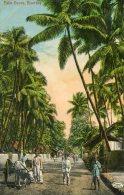 INDIA -  BOMBAY  Palm Grove - India