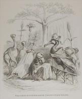 """Grandville. """"Scènes De La Vie Privée Et Publique Des Animaux"""". 1842. - Prenten & Gravure"""