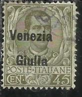 VENEZIA GIULIA 1918 - 1919 SOPRASTAMPATO D´ITALIA ITALY OVERPRINTED CENT. 45 C USATO USED OBLITERE´ - 8. WW I Occupation