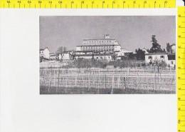 CO-6043 SAN GIORGIO MONFERRATO CON IL CASTELLO DEGLI SCARAMPI - Chromos