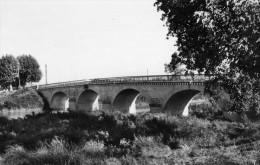 SAINT LAURENT D'AIGOUZE - GARD   (30) -  CPSM  DES ANNEES 1950. - France
