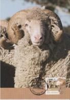 Australia Maximum Card Mi 3760 - Postal Stationery - Farming Australia - Sheep Wool - 2012 - Maximumkaarten