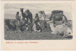 25595g  LIBAN - Bédouins En Groupe Avec Chameaux - Liban