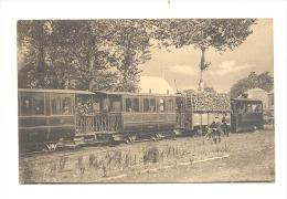 ROSSIGNOL - Arrivée Du Tram Marbehan - Ste Cécile - Tramway - Vicinal   (Y286) - Other