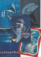 17 CPM - DAUPHIN (dauphins) - Toutes Différentes - Delphine