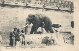 Postcard RA004204 - India Srirangam (Vellithirumutha Gramam) Elephant - Elephants