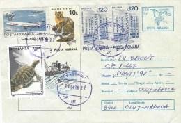 Rumania 1998 Pascani Whaling Ship Whale Marter Tortoise Tarom Aviation Airplane Postal Stationary Cover - Baleines
