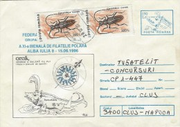 Rumania 1998 Buleta Whale Orca Cerambyx Beetle Insect Postal Stationary Cover - Baleines