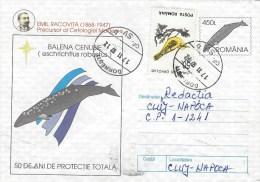Rumania 1997 Dornesti Gray Whale Eschrichtius Robustus Bird Postal Stationary Cover - Baleines