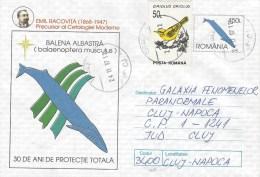 Rumania 1997 Turda Blue Whale Balaenoptera Musculus Bird Postal Stationary Cover - Baleines