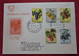 COVER Brief 1973 SAN MARINO FDC Früchte Briefmarke - FDC