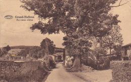 Grand-Halleux 14: Au Vieux Chêne 1930 - Vielsalm