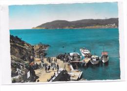 7718 - 83 - ILE DU LEVANT : Le Port De L' Ayguade - Altri Comuni