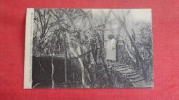 Missions Des Peres Blancs, Afrique Centrale  Tanganika   Pont Indigene------ref 1882 - Missions
