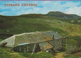 43  °°  Ferme  Cévenolle  :-  Tout Un Art De Vivre Sous Le Mont  MEZENC  Culminant à 1754 M. * écrite  ***  Le Texte++++ - France