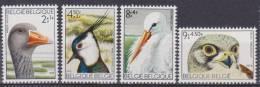 Belgique N° 1652 - 1655 *** Oiseaux Du Zwin : Oie Cendrée, Vanneau Huppé, Cigogne Blanche, Faucon Crécerelle - 1972 - Neufs