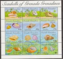 GRENADA GRENADINES Shells - Conchiglie