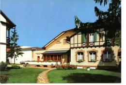 Eguisheim : Coopérative Vinicole De Vins D'Alsace (n°11) - Frankrijk
