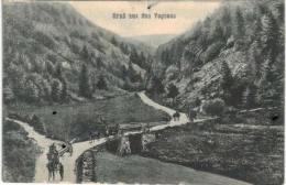 Thème - Militaria  -  Vosges - Pioniere Bem Holzholden - Soldats Transportant Du Bois - Militaria