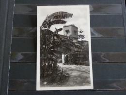 L7 - Maroc - Taroudant - Dans Les Jardins De Marhaba - Autres