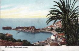 MADEIRA (Camara De Lobos), Um 1900 - Madeira