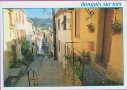 66  °°  Banyuls Sur Mer   :-   La Rue Commerçante - Mais Qui Monte Et Vaut Le Détour     ***   NEUVE  Non écrite - Banyuls Sur Mer