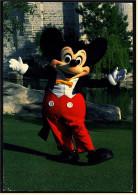 USA , Florida  -  Walt Disney World  -  Mickey Mouse  -  Ansichtskarte Ca.1983   (4690) - Disneyworld