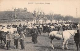 HESDIN - Le Marché Aux Chevaux - Hesdin