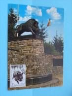 Monument Aux Chasseurs Ardennais ( Afstempeling Post ) Anno 19?? ( Zie Foto Details ) !! - Poste & Facteurs