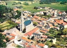HAUTE - GOULAINE  ( 44 ) -   Vue Aérienne Du Bourg  ( C.P.M.  , Gd  -  Ft  ) - Haute-Goulaine