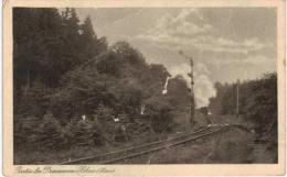 Allemagne - Wernigerode PArtie Bei Dreiannen Hohne - Zug - Train à Vapeur (!Mehrerer Falten Und Schaden) - Wernigerode