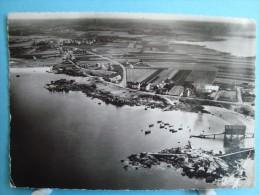29 - Trévignon-Tregunc - CPSM - Vue Aérienne Du Petit Port - 1960 - Trégunc