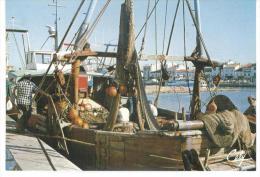 CP-11 - Port La Nouvelle Le Port De Peche - Port La Nouvelle
