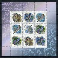 Rusia 1993. Yvert 6008-12 Block ** MNH. - 1992-.... Föderation