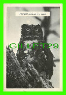 OISEAUX - HIBOU, POURQUOI FAIRE LES GROS YEUX ? - OBLIGATIONS D'ÉPARGNE DU CANADA - CIRCULÉE EN 1950 - - Oiseaux