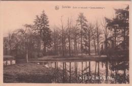 Schilde 1950 Zicht In Het Park Spreeuwenborg - Vue Dans Le Parc Spreeuwenborg / LINKS VOORAAN ENKELE GANZEN - Schilde