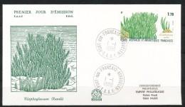 Franz.Gebiete I.d.Antarktis - Mi.Nr .     233        Gestempelt -     FDC - FDC