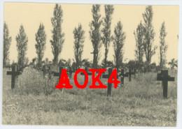 SINT-PIETER Ledegem Militaire Begraafplaats Flandern Menen Wald 1940 Ehrenfriedhof Friedhof - Ledegem