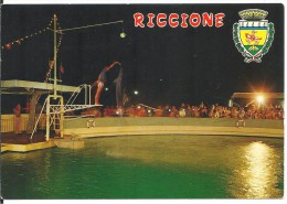 ! - Emilie-Romagne - Riccione - Aquarium : Spectacle De Nuit - Carte Postale Vierge - Italie