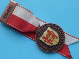 T.D.H. District De CONTHEY 1974 - Speld ( Suisse / Schweiz - For Grade, Please See Photo ) !! - Jetons & Médailles