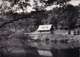 Habay-la-Neuve Le Pont D'Oye - Le Grand Lac Circulée En 1955 - Habay