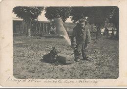 WW 641 / CARTE PHOTO    -LISIEUX - (14)  DRESSAGE DE CHIENS DERRIERE LA CASERNE DELAUNAY