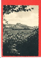 59 GODEWAERSVELDE Cpsm Mont De Cats Paturages De L' Abbaye         1        Helio Loraine - France