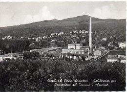 Toscana-grosseto-castel Del Piano Veduta Stabilimento Ciaccine Per L' Estrazione Del Tannino - Italia