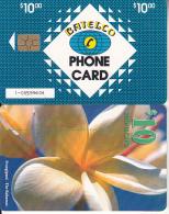 BAHAMAS ISL.(chip) - Frangipani(BAH C25b), Medium Number In Box, Chip GEM6b, Used - Bahamas