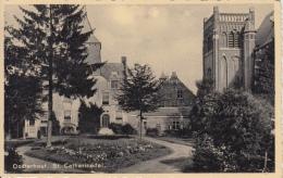 Oosterhout    St Catharinadal        Nr 3230 - Oosterhout